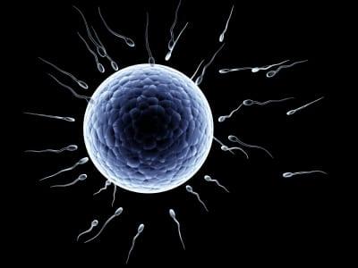 Jajne ćelije – Kasno ali ne prekasno, pametan način da ostanete trudni